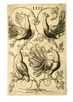 Playing-card, the 4 of peacocks, a copy after the 4 of peacocks in a pack of 52 playing-cards designed and etched by Virgil Solis. The suits in this pack are parrots (for hearts), monkeys (for acorns), peacocks (for leaves), and lions (for bells). c.1550 Etching