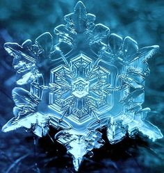 snowflake. Microscopic
