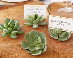 Succulent Place Card Holder (Set of 4) for Boho  wedding from HotRef.com #bohemian #wedding