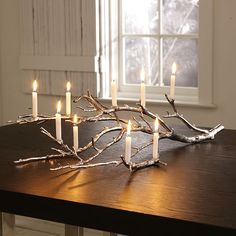 Silver Branch Candle Holder with Mini Taper Candles (West Elm)