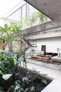 Sunday Sanctuary: Urban Jungle