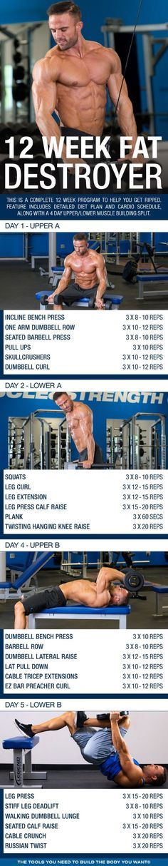 (Click through to d PDF!) This is a complete 12 week program to help you get ripped. Feature includes detailed diet plan and cardio schedule, along with a 4 day upper/lower muscle building split. Wöchentliches Training, Fitness Studio Training, Weight Training, Weight Lifting, Weight Loss, Strength Training, Mental Health Articles, Health And Fitness Articles, Health Fitness