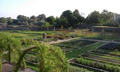 Our herb garden with the plant beds. In the background unfold the archeological area