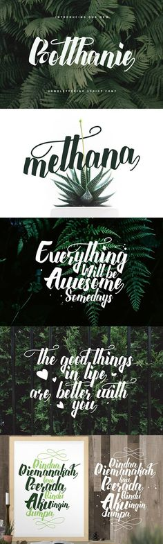 Introducing Botthanie Botanical Script Font a Brush Calligrahpy Font style, created on reflect the Beautifull and girly. Custom Fonts, Font Styles, Script Fonts, Brush Lettering, Cool Fonts, Glyphs, Custom Mugs, Advertising Design, Art Quotes