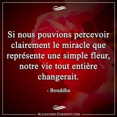 #citation #citationdujour #proverbe #quote #frenchquote #pensées #phrases #french #français #amour