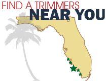 Trimmers Holiday Decor Christmas Lighting    http://trimmersholidaydecor.com/