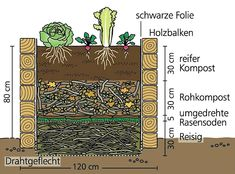Planting on raised garden beds brings many benefits compared to planting on the ground. But the most crucial one is you can grow a garden even in a Raised Vegetable Gardens, Veg Garden, Vegetable Garden Design, Garden Plants, Vegetable Planters, Building A Raised Garden, Raised Garden Beds, Raised Beds, Farm Gardens