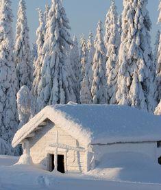 Frozen hovel in Paljakka, Puolanka, Kainuu, Finland.