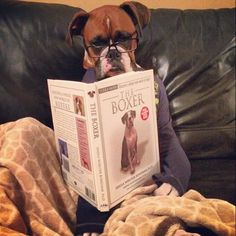 Time for a bedtime story......