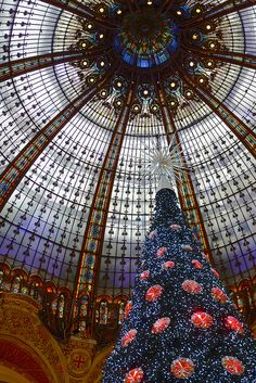Galeries Lafayette tree Galeries #Lafayette, 9th #arrondissement, #Paris, France