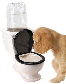 Toilet Water Bowl  Ótimo!!!