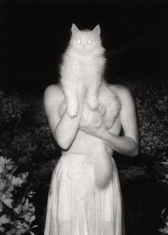 Once Upon a White Night by Masaaki Miyazawa , September 15, 1981
