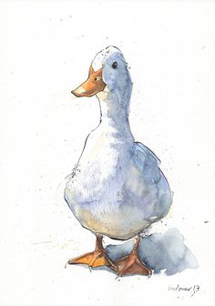 Curious White Duck - Original pen & ink drawing, watercolour painting - A4 gift, watercolor, Duck, birds, ducks, waterbirds, duckling by TheArtfulSplodger on Etsy #watercolorarts #drawing