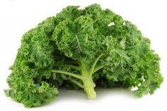 14. Kale | Top 20 Super Healthiest Foods On The Planet – Healthy Foods