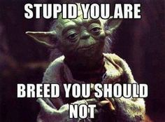 With the new Star Wars film coming out soon, there is no better time to show a collection of the best Star Wars Memes! Funny Star Wars memes from a galaxy far, far away. Funny Quotes, Funny Memes, Hilarious, Yoda Quotes, Sarcasm Quotes, Biker Quotes, Funny Comedy, Comedy Movies, Stupid Memes