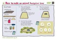 So many activity sheets on this website!
