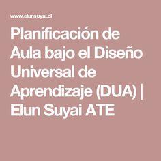 Planificación de Aula bajo el Diseño Universal de Aprendizaje (DUA) | Elun Suyai ATE