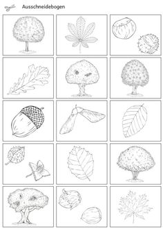 Science and nature 724938871244676053 Outdoor Scavenger Hunts, Kindergarten Portfolio, K Om, German Language Learning, Christmas Cocktails, Nature Journal, Woodland Party, Science And Nature, Kids Learning