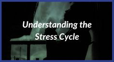 Persistent stress will have detrimental effects on your vitality and health. Learn the stress cycle and how to find the root cause of your stress.  Revitalized Mind is your resource to transform your mind and life of growth, happiness, fulfillment, and success.  Visit www.revitalizedmind.com to start your journey towards the life you desire.