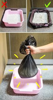 Genius Tricks the Internet Doesn't Know About Yet Pull a garbage bag onto the cat litter box, and then fill it. Cleaning the box will be much easierPull a garbage bag onto the cat litter box, and then fill it. Cleaning the box will be much easier Diy Litter Box, Bunny Care, Cat Hacks, Cat Diys, Cat Room, Cat Tree, Cat Furniture, Furniture Stores, Diy Stuffed Animals