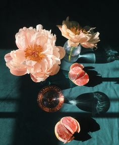 I love the rich still life imagery of The blush tones on the rich teal Red Anemone, Roman And Williams, Teal And Pink, Teal Green, Dark Purple, Vanitas, Still Life Photography, Time Photography, Pretty Flowers
