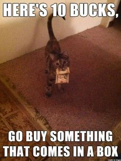 Absolutely Funny Pictures 24/7 @ http://funnypictures247.com