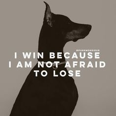 I win because I am not afraid to lose