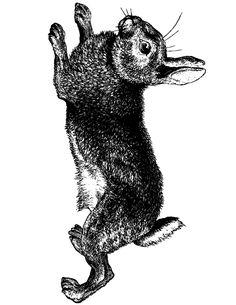 easter-bunny-vintage-drawing-prt @ Vintage Fangirl