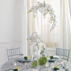 Tall, elegant orchid centerpiece