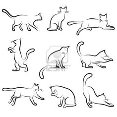 кошки Фотографии, картинки, изображения и сток-фотография без роялти