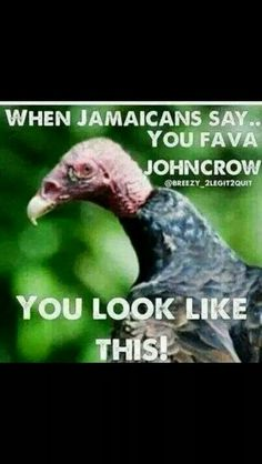 64 Best Jamaican Saying Images Thinking About You Thoughts