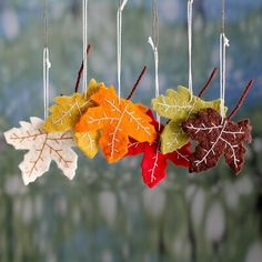 Wool ornaments, 'Maple Glory' (set of - Handcrafted Holiday Leaf Ornaments from India Set of 6 (imageBuy Wool ornaments, 'Maple Glory' (set of today. Shop unique, award-winning Artisan treasures by UNICEF Market.Maple Glory from They help succeed wor Thanksgiving Crafts, Holiday Crafts, Holiday Decor, Fall Felt Crafts, Diy Autumn Crafts, Felt Leaves, Felt Christmas Ornaments, Christmas Nativity, Felt Flowers