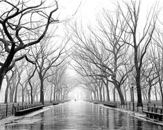 Poet's Walk, Central Park in 1994. Shot with a large-format view camera during a freezing rain. This remains the most popular print on the site. Frankly, I almost didn't take this photograph because it was so cold and the film holders were getting wet. Just as I was about to pack up, the couple entered the scene, and I just waited until they were in the distance to try to give the looming trees some scale. A few years ago, the glistening stones were dug up and replaced by dirt. You think…
