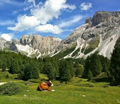 Countryside, The Dolomites