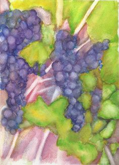 Grapes on the vine, watercolour, A4