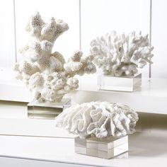 White Coral Sculpture Set