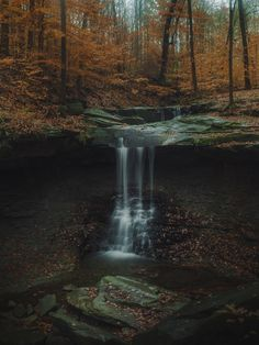 Only orange leaves left at Blue Hen Falls Ohio [OC] [1536x2048] reddtedd2 http://ift.tt/2mEgySX November 18 2017 at 10:21AMon reddit.com/r/ EarthPorn