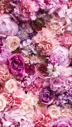 New flowers background iphone photography pink roses Ideas Peonies Wallpaper, Flower Phone Wallpaper, Flowers Background Iphone, Floral Wallpaper Phone, Background Ideas, Heart Wallpaper, Tumblr Wallpaper, Wallpaper Backgrounds, Floral Wallpapers