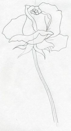 Draw a Rose Quickly, Simply And Easily