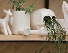 JUNGLE SPIRIT & DESIGN LOVERS Vivarium, Succulents, Spirit, Lovers, Mugs, Tableware, Design, Dinnerware, Tumblers