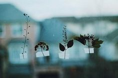 make you smile ♥ All The Bright Places, Foto Instagram, Foto Art, Blue Aesthetic, Aesthetic Indie, Slytherin, Belle Photo, Silhouettes, Flora