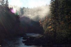 Umpqua River. Oregon.