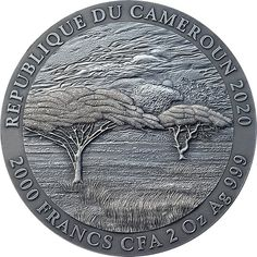 Cameroon 2020 2000 Francs PANTHERA LEO Expressions of Wildlife 2oz Silver Coin