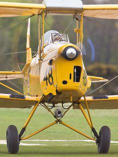 de Havilland DH.82 Tiger Moth G-BPHR representing the Australian Air Force aircraft A17-48 taking off from the Microlight Trade Fair, Popham