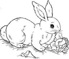 awesome bunny rabbit coloring page for computer
