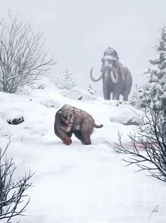 Woolly Mammoth and Smilodon by Michael Michera