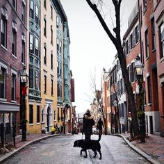 Head for a stroll around Beacon Hill Boston this weekend! #repost : @eazadzoi