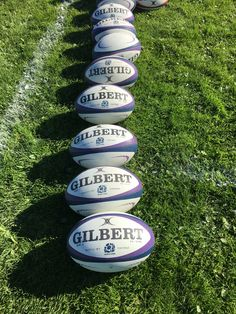 Rugby Pictures