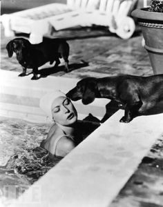 The legendary screen actress Joan Crawford gets a kiss from her dachshund Bubchen, while Baby looks on. Life Magazine