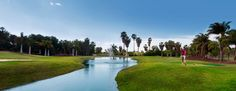 CENTRO DE GOLF LOS PALOS Tenerife, Islas Canarias / Canary Islands / Teneriffa, Kanarische Inseln Golf Courses, Sticks, Canary Islands, Country, Centre, Tourism, Canarian Islands, Tenerife